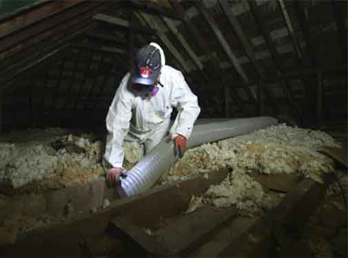 Why Choose The Pros For Old Insulation Removal?