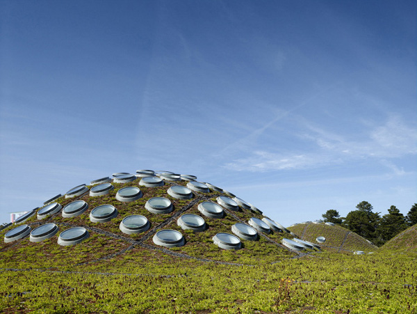California-Academy-of-Sciences-by-Renzo-Piano-1