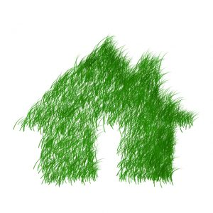 green house spray foam insulation can reduce energy consumption